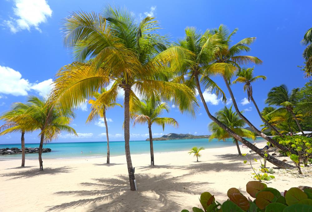 Luxury Villas in Barbados for Christmas and New Year